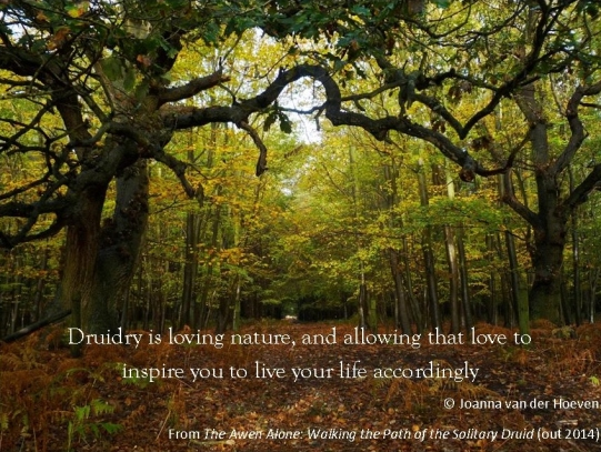 What is Druidry