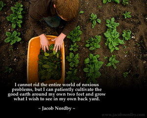 jacob norby