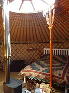 Mongolian small