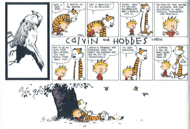from Bill Waterson's Calvin & Hobbes, It's A Magical World