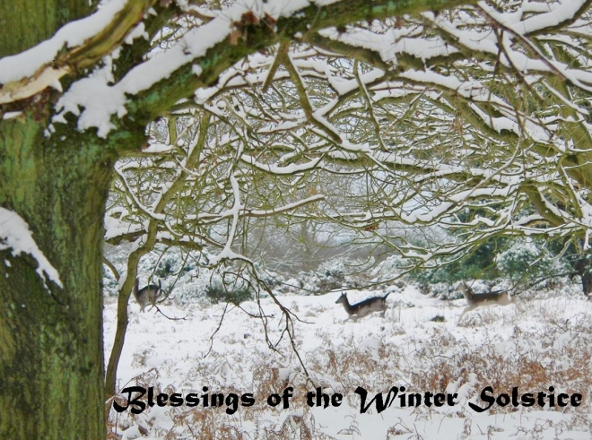 Winter Solstice 1 (2)