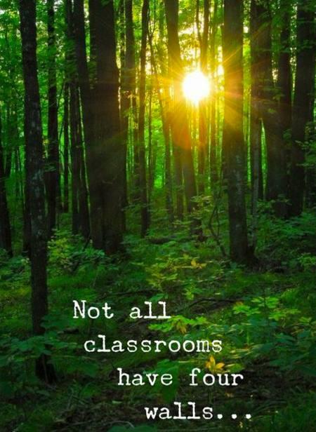 nature classroom