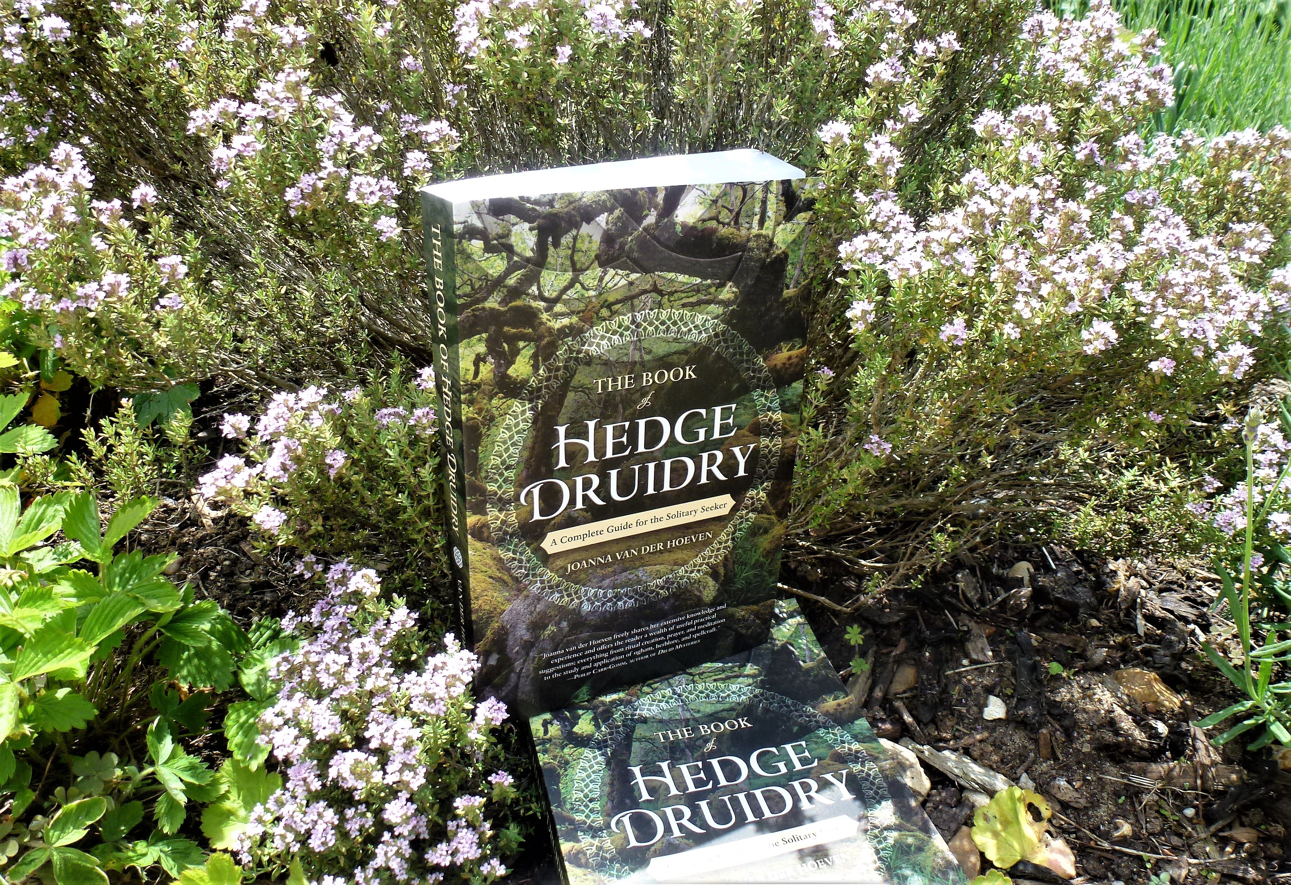 Prize Draw for The Book of Hedge Druidry! – Down the Forest Path
