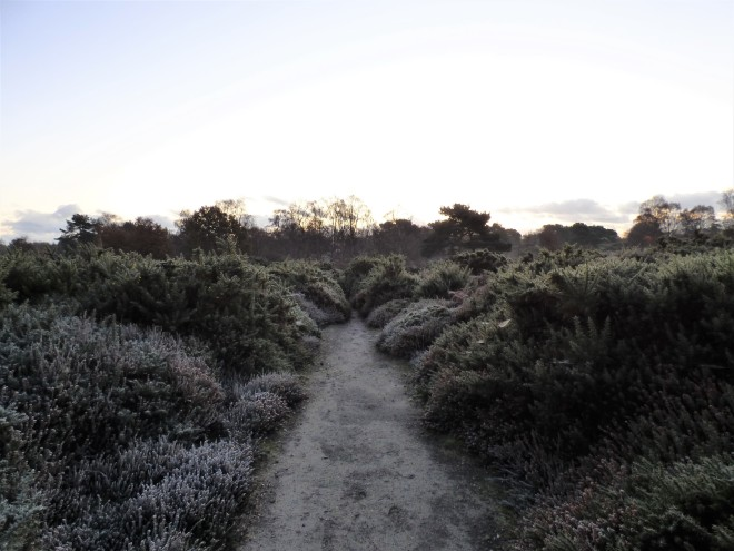 The Frosty Path to Dawn